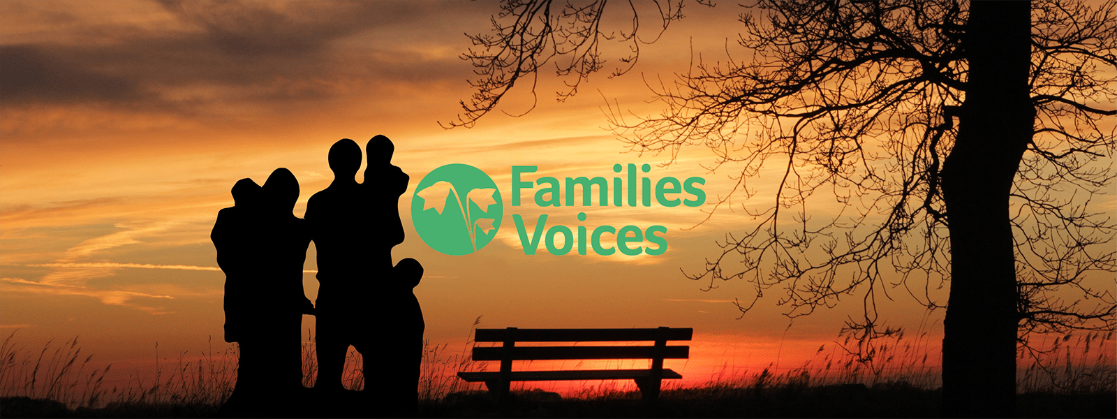 Families Voices Forum logo with the image of a family in silhouette at sunset