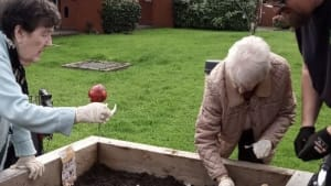 Two older ladies planting vegetables in a raised planter